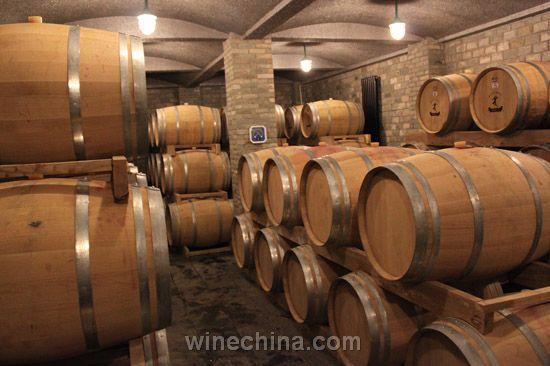 西夏王公司酒窖