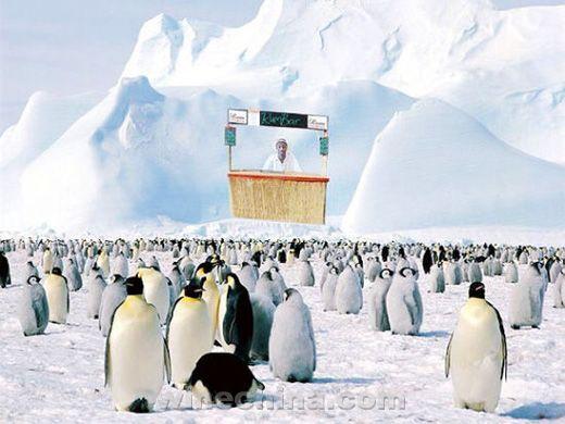 南极第一家朗姆酒吧建立