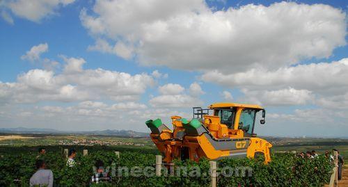 张裕在葡萄基地举行种植机械推演现场观摩会