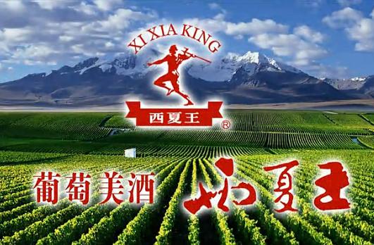 视频:葡粹印象――西夏王葡萄酒业有限公司