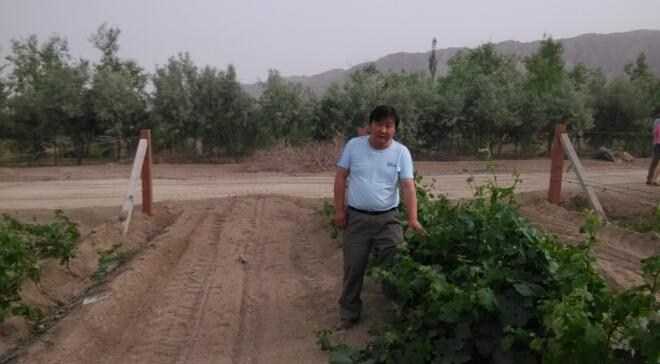 中国酿酒师风采录(51)成正龙:用一颗热爱、执著、感恩的心酿造葡萄酒