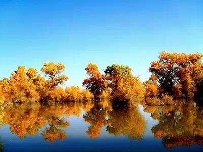 """【大美新疆】一个资深老新疆的2015年""""美色""""计划"""