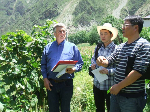 """中国酿酒师风采录(62)崔可栩:酿造心中的""""香格里拉"""""""
