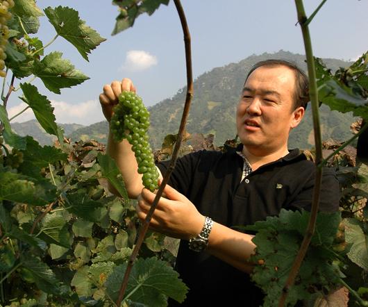 中国酿酒师风采录(75)王军:酿造特色是永恒的主题