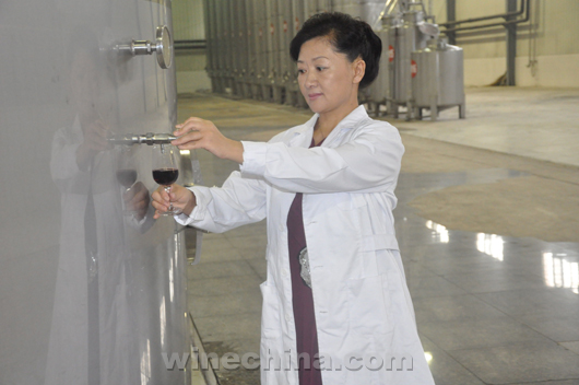 Chinese Winemakers (69) Gao Xiaobo:Have a wine dream since childhood