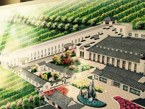 【葡粹动态】禹皇酒庄再升级 二期项目开始动工