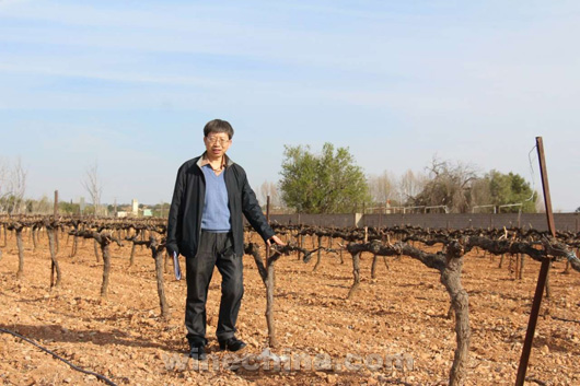 Chinese Winemakers (73) Li Jiming:One Grape,A Glass of Wine