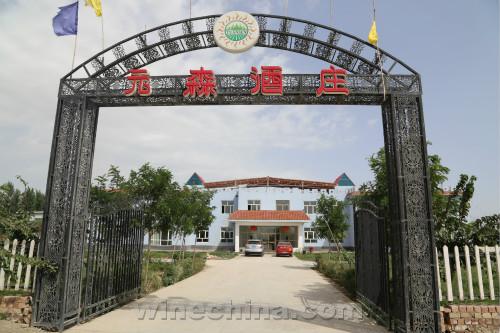 2015中国优质葡萄酒挑战赛获奖产品鉴赏(7)元森酒庄