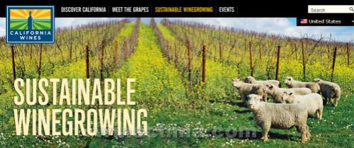 加州葡萄酒旅行漫记(三)加州的可持续酿酒葡萄种植(上)