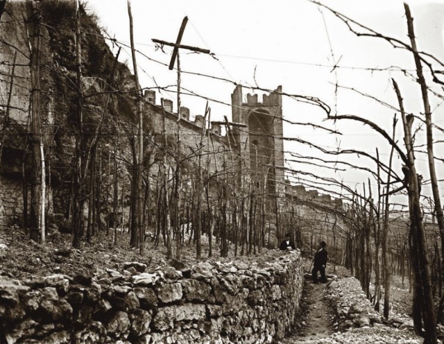 Italy Lists Soave In National Register