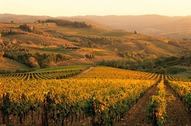 Chianti bids to join UNESCO world heritage club