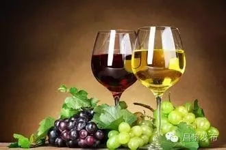 主动出击 创新业态 注入文化 革新理念――昌黎加快红酒产业升级