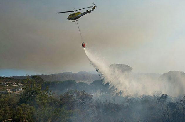 South Africa fire damages 300 year old Vergelegen wine estate