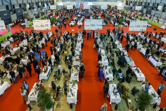 Millésime Bio, world organic wine fair