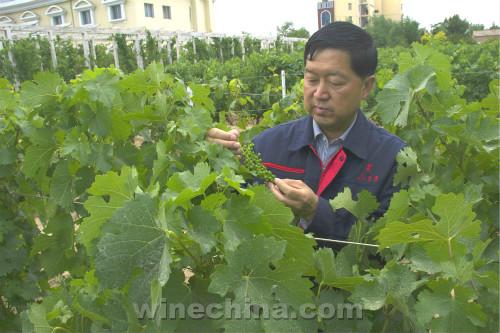 俞惠明:助力酿酒师走向市场