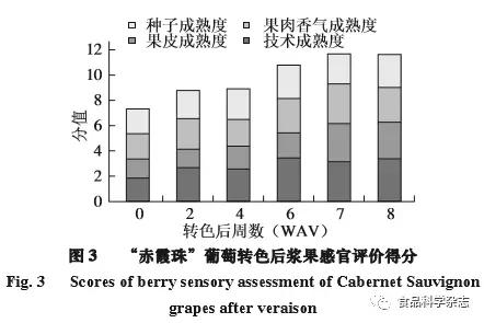 """解读""""赤霞珠""""葡萄转色后不同成熟度指标的变化"""