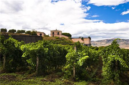 2017年最值得期待的十大葡萄酒旅游胜地清单
