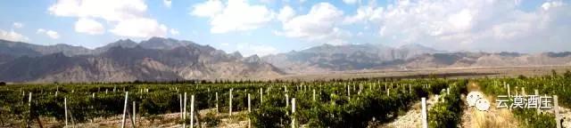 长城大漠葡园酒标荣获2016年度L9世界标签大奖赛胶印葡萄酒/烈酒奖项