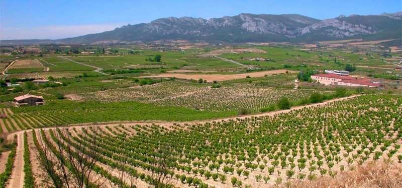 浪漫国度的不浪漫土地――西班牙卢埃达