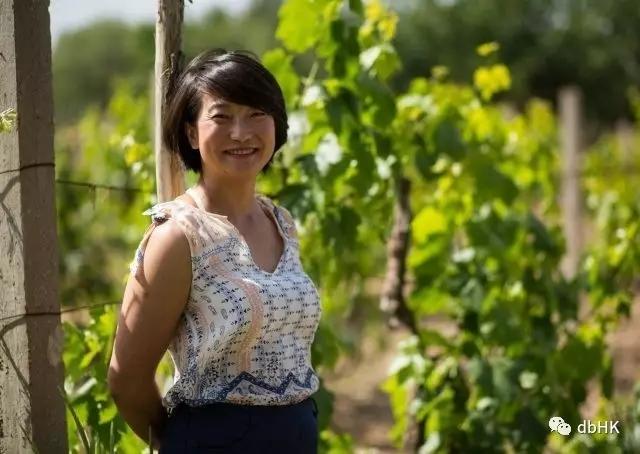 中国葡萄酒产区-宁夏专访(上)