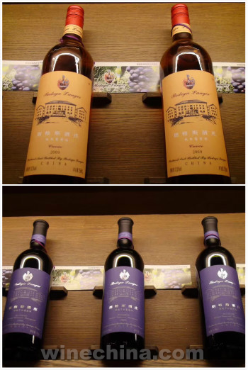 朗格斯酒庄欢迎您品尝真正的庄园酒