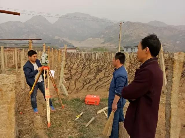 昌黎葡萄小镇项目稳步推进