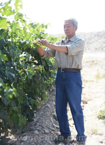【品质十年】金牌酒庄:(12)银色高地酒庄:登顶贺兰 昂首天歌