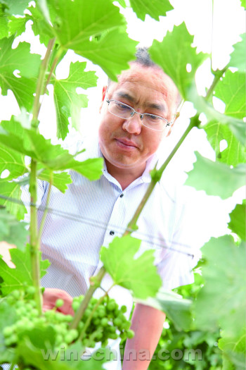 【品质十年】金牌酿酒师(10)李泽福:不断突破  寻得卓越