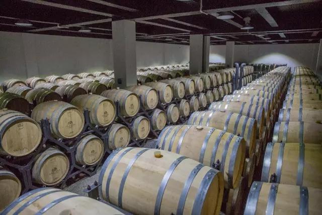 【葡粹动态】新疆沙地酒庄&上海啸狮国际双方共建生产基地正式投产!