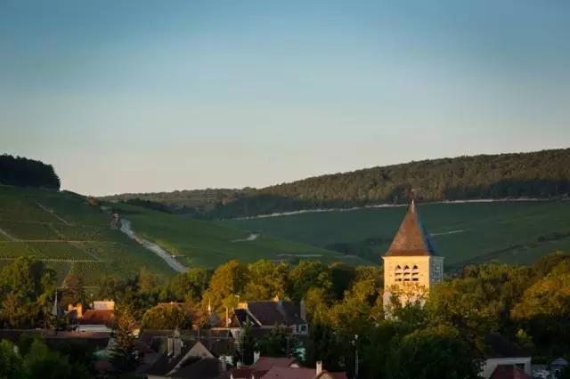 勃艮第葡萄酒课堂|Chablis产区的奥秘