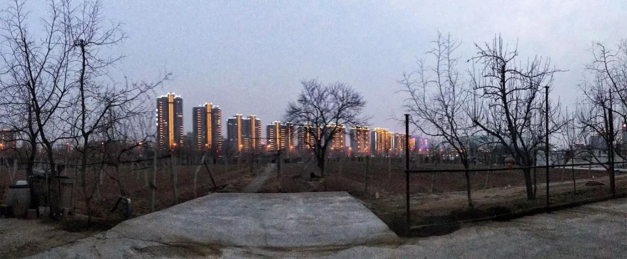 中国人不敢想的世界级车库名庄,被这对父女用10年建成了
