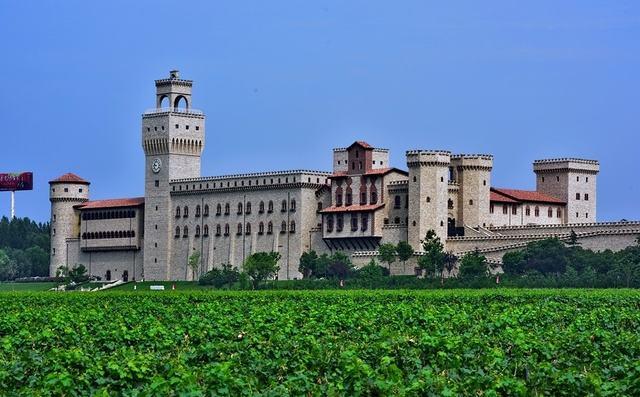 关于召开2017年中国葡萄酒技术委员会年会的通知