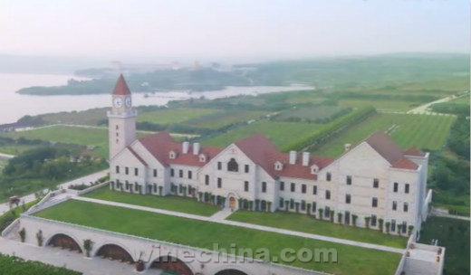 Video:Weilong-The Pioneer of Organic Wine in China