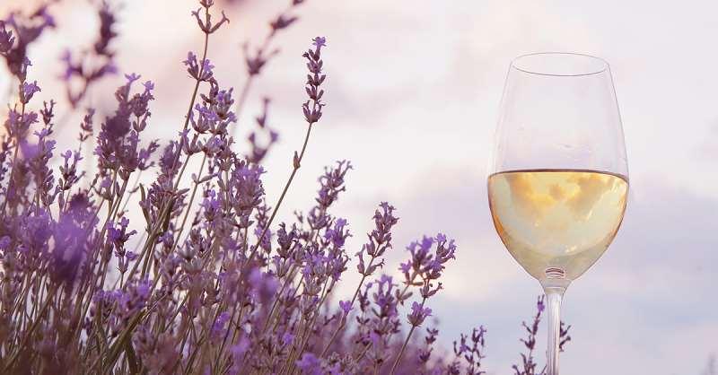 美酒相伴,春意更浓