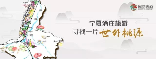 【视频】走进青铜峡葡萄酒产区