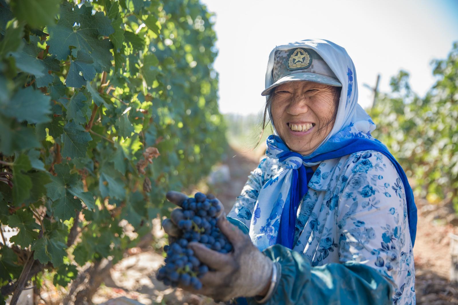风云际会|新疆沙地酒庄将亮相2018年成都春季糖酒会!