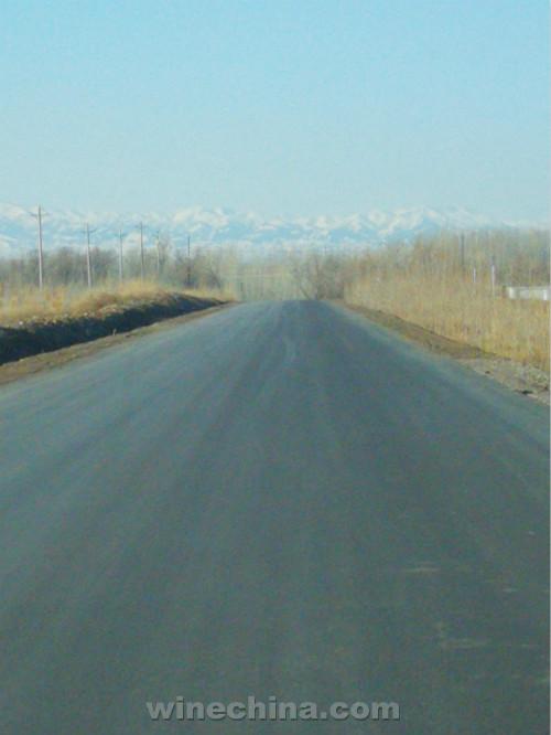 【总编手记】伊犁河谷,新疆最后一座葡萄酒天堂(下)