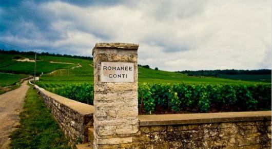 罗曼尼・康帝将推出科尔登-查理曼园白葡萄酒