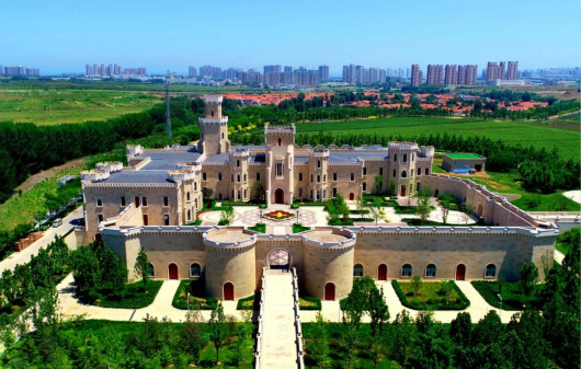 Video:Opening Ceremony of Changyu Wine Town
