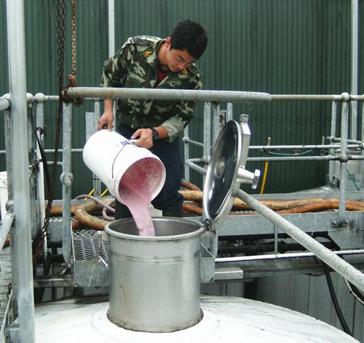 在澳洲工作时往发酵罐中接种酵母_副本.jpg